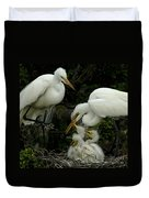 Great Egret Family 2 Duvet Cover
