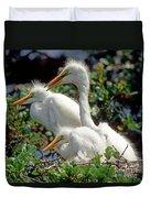 Great Egrets Duvet Cover