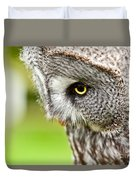 Great Gray Owl Close Up Duvet Cover