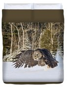 Great Gray Owl Pictures 740 Duvet Cover
