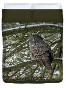Great Gray Owl Pictures 780 Duvet Cover