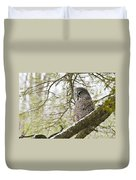 Great Gray Owl Pictures 804 Duvet Cover
