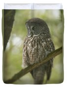 Great Gray Owl Pictures 823 Duvet Cover