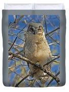 Great Horned Owl 2 Duvet Cover