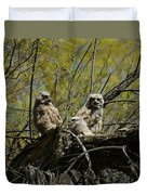 Great Horned Owlets 1 Duvet Cover