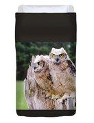 Great Horned Owlets Duvet Cover
