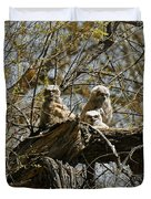 Great Horned Owlets Photo Duvet Cover