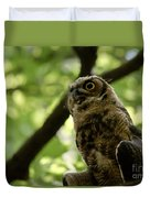 Great Horned Youngster Duvet Cover