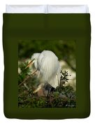 Great Egret Takes A Stance Duvet Cover