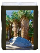 Great Sliding Rock In Lower Palm Canyon In Indian Canyons Near Palm Springs-california Duvet Cover