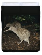 Great Spotted Kiwi Breeding Pair New Duvet Cover