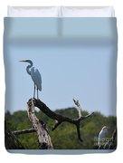 Great White Egret And Friend Duvet Cover