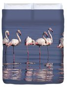 Greater Flamingo Group Duvet Cover