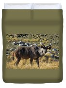 Greater Kudu Grazing Duvet Cover