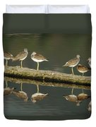 Greater Yellowlegs Duvet Cover