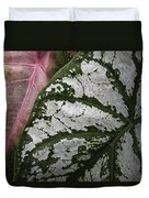 Green And Pink Caladiums Duvet Cover