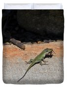 Green Anole Lizard Vs Wolf Spider  Duvet Cover