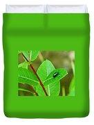 Green Beetle Foraging Duvet Cover