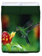 Green-crowned Brilliant Heliodoxa Duvet Cover