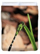 Green Dragonfly On Grass Square Duvet Cover