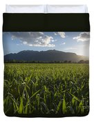 Green Field In Sunset Duvet Cover