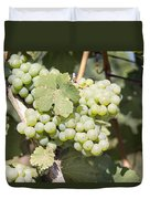 Green Grapes Growing On Grapevines Closeup Duvet Cover