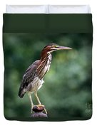 Green Heron 2 Duvet Cover