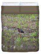 Green Heron Along Shore Duvet Cover