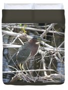 Green Heron In Everglades Np Duvet Cover