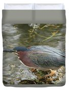 Green Heron On The Lookout Duvet Cover