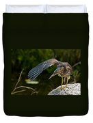 Green Heron Pictures 386 Duvet Cover