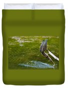 Green Heron Pictures 414 Duvet Cover