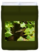 Green Heron Pictures 430 Duvet Cover