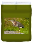Green Heron Pictures 449 Duvet Cover