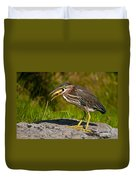 Green Heron Pictures 457 Duvet Cover