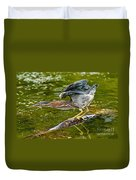 Green Heron Pictures 522 Duvet Cover