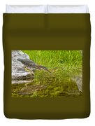 Green Heron Pictures 534 Duvet Cover