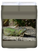 Green Iguana Lizard Duvet Cover