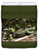 Green Inguana In The Shrubs I Duvet Cover