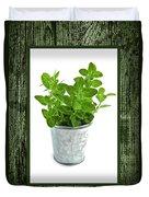 Green Oregano Herb In Small Pot Duvet Cover