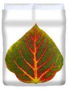 Green Red And Yellow Aspen Leaf 4 Duvet Cover
