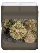 Green Sea Urchins Duvet Cover