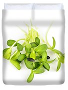 Green Sunflower Sprouts Duvet Cover by Elena Elisseeva