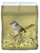 Green-tailed Towhee Duvet Cover