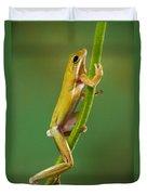 Green Tree Frog Climbing Duvet Cover