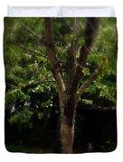 Green Tree In Park Duvet Cover