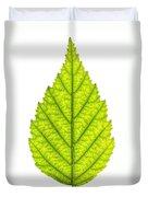 Green Tree Leaf Duvet Cover by Elena Elisseeva