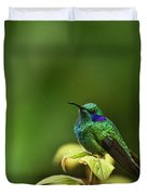 Green Violetear Hummingbird Duvet Cover