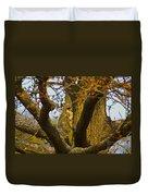 Green Woodpecker Richmond Park Duvet Cover