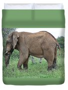 Greener Pastures-after The Rains Duvet Cover